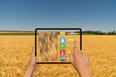 Smart lantbruk och digitalt åkerbrukt begrepp arkivbilder