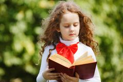 Smart little girl reading a book in the park. Back to school concept stock photo