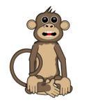 Smart Monkey Stock Image