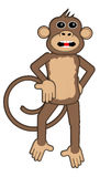 Smart Monkey Stock Photography