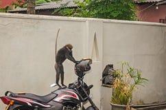 A smart monkey is stealing bread Stock Photo
