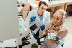 Smart muslim woman looking at test tubes. Samples for research. Smart muslim women looking at test tubes while choosing samples for the research stock image