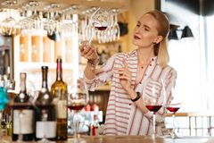 Smart nice female sommelier checking wine quality. Elite drink. Smart female sommelier looking at the glass with wine while checking its quality royalty free stock photos
