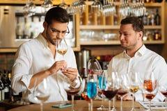 Smart nice men tasting different kinds of wine together. Restaurant sommeliers. Smart nice men standing together while tasting different kinds of wine stock photos