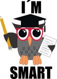 A smart owl Stock Images