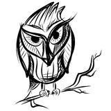 Smart owl on the branch Stock Image
