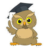 Smart owl. Cartoon character graduation owl. Vector Royalty Free Stock Photos