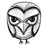 Smart owl. Education, wisdom symbol. Stock Photography