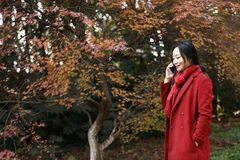 Smart phone Autumn woman talking on mobile in fall. Smart phone Autumn woman talking on mobile phone in fall. Autumn girl having smartphone conversation in sun Royalty Free Stock Photos