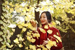 Smart phone Autumn woman talking on mobile in fall. Smart phone Autumn woman talking on mobile phone in fall. Autumn girl having smartphone conversation in sun Royalty Free Stock Images