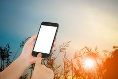 Smart Phone a disposizione con il fondo della siluetta Fotografie Stock