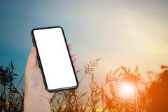 Smart Phone a disposizione sul tramonto con il fondo della siluetta Immagini Stock Libere da Diritti