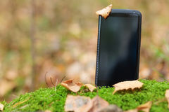 Smart phone in moss Royalty Free Stock Photos