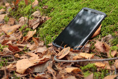 Smart phone in moss Stock Image