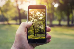 Smart phone in my hands royalty free stock image