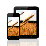 Smart phone and tablet with wheat field wallpapers. Isolated on a white background with reflection Royalty Free Stock Photo