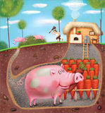 Smart Pig Stock Images