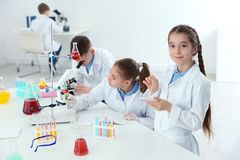 Smart pupils making experiment at table in class. Smart pupils making experiment at table in chemistry class royalty free stock image