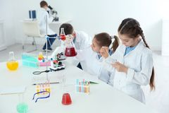 Smart pupils making experiment at table in class. Smart pupils making experiment at table in chemistry class stock image