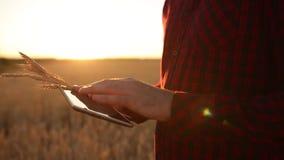Smart que cultiva usando tecnologías modernas en agricultura Las manos del granjero tocan la exhibición de tableta digital con lo metrajes