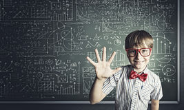 Smart schoolboy Royalty Free Stock Photography