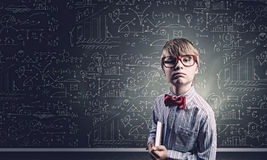 Smart schoolboy Royalty Free Stock Photo