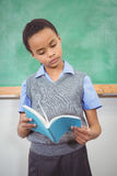 Smart student reading a book Stock Image