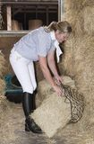 Horsewoman in a stable preparing hay to feed a horse. Smartly dressed horse rider filling a haynet to feed a horse. November 2017 Stock Image