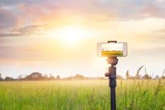 Smartphone auf Stativaufzeichnung timelapse im Sonnenuntergangnatur backgrpund Stockfoto