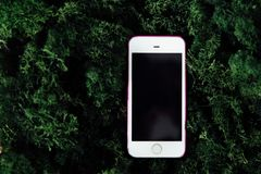 Smartphone with black screen on background of green moss. Royalty Free Stock Photos