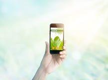 Smartphone della tenuta della donna che mostra a schermo il blog ambientale di web Immagine Stock