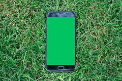 Smartphone do close-up com a tela verde para a tela chave do croma No fundo da grama verde Foto de Stock
