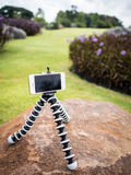 Smartphone installed on flexible tripod in garden Stock Photography