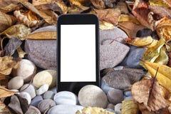 Smartphone mall Fotografering för Bildbyråer