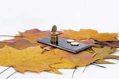 Smartphone on maple leaves background with some coins. Autumn abstraction royalty free stock image