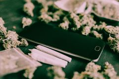 Smartphone and Marijuana Cannabis buds in the package on the table and joint on table. In a moody green tone horizontal royalty free stock photography