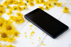 Smartphone maschio nero in mezzo ai colori di campo gialli Immagini Stock