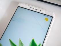 Smartphone med den spruckna skärmen för blandat exponeringsglas royaltyfri foto
