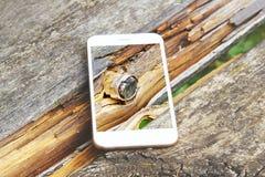Smartphone met het transparante scherm propped op houten bank Royalty-vrije Stock Afbeeldingen