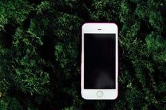 Smartphone met het zwarte scherm op achtergrond van groen mos royalty-vrije stock foto's