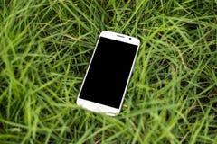 Smartphone mobile sull'erba Fotografie Stock Libere da Diritti