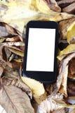 Smartphone och sidor Arkivbild