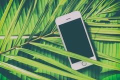 Smartphone op een groene natuurlijke tropische achtergrond, palmbladen, Royalty-vrije Stock Foto