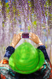 Smartphone photography Royalty Free Stock Photos