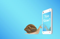 Smartphone with snail. A slow smartphone with snail Royalty Free Stock Photo