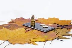 Smartphone sul fondo delle foglie di acero con alcune monete Immagine Stock Libera da Diritti