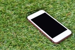Smartphone sur le fond d'herbe Image libre de droits