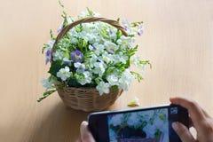 Smartphone toma las fotos de flores en cesta y fondo de madera Imagen de archivo