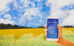 Smartphone van de handholding, gouden gebieden als achtergrond en grafieken die voorraden, de organische landbouwproducten van de royalty-vrije stock fotografie