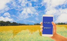Smartphone van de handholding, gouden gebieden als achtergrond en grafieken die voorraden, de organische landbouwproducten van de stock foto's